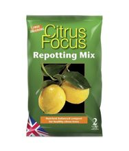 Growth Technology Citrus Focus Repotting Mix 2L - kompost do uprawy cytrusów