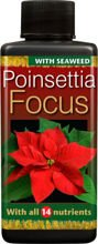 Growth Technology Poinsettia Focus 100ml - odżywka dla poinsettii