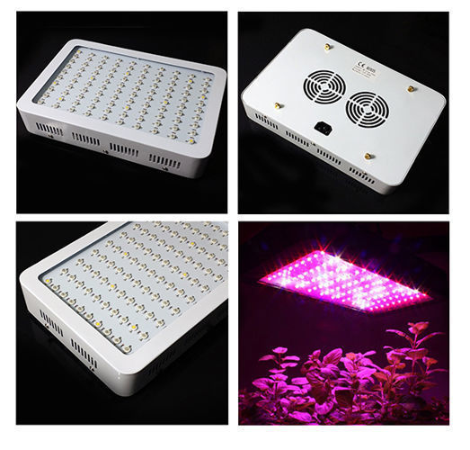 Lampa LED GROW 300W  /11-kolorowa - full spectrum